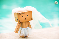 Danbo's Wedding <3 (Ylang Garden) Tags: beach toys miniature outdoor rement danboard