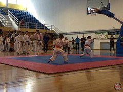 stefanou_15_5_2016_knockdown_13