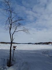 Snowmobile Road, Lake Inari (Soresha) Tags: snow frozenlake