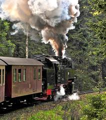 Schierke Harz Germany 17th May 2016 (loose_grip_99) Tags: railroad train germany deutschland smoke may engine rail railway trains steam transportation locomotive railways harz 2016 gassteam