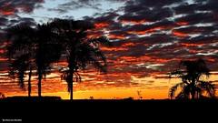 Anoitecer (Emerson Bordim) Tags: sunset nature natureza entardecer