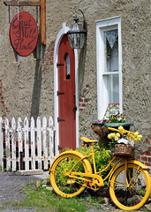 IMG_4563a (Jules1102) Tags: nature bicycle yellow outdoor country rustic antiques charming