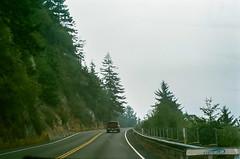 45470007 (danimyths) Tags: california trees mist film fog forest coast roadtrip pch redwood westcoast californiacoast filmphotography pacificcostalhighway
