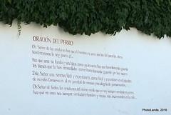 Oracin del Perro (Landahlauts) Tags: dog graffiti grafitti grafiti district andalucia perro granada quarter andalusia carmen andalusien barrio pintada andalousie albaicin andalusie oracion alandalus andaluzia aljibe andalusi patrimoniodelahumanidad albayzin andaluzja andaluzio    endulus  albayyzn albayyzn   andalouzia andalusiya fujifilmxpro1 granadaislamica fujifilmfujinonxf18mmf2  reinoziri epocaibera granadamusulmana