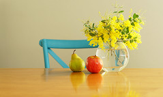 Juicy pear or crisp apple? (judith511) Tags: apple fruit reflections chair timber pear vase boquet wattle decisions odc