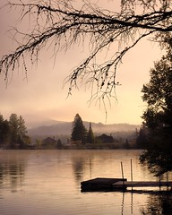 (GBrosseau) Tags: pink trees lake nature quebec lavender wharf mauve monttremblant barebranches lacsuperieur