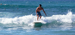 IMG_0221.jpg (Michele Stocco) Tags: beach hawaii maui surfers hookipa 2016