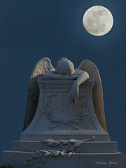 L'angelo del dolore (adrianaaprati) Tags: italy moon roma cemetery angel composition photoshop pain artist luna artists protestant grief poets cimiteroacattolico langelodeldolore theangelofgrief