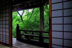 Green Window (tez-guitar) Tags: leica wood summer green forest garden temple maple kyoto leicax1