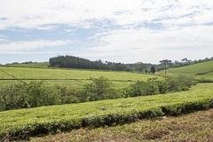 OU9A8249.jpg (Jeremy Denlinger) Tags: ernest uganda adoption