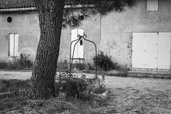 Well (Sara@Shotley) Tags: blackandwhite well tree summer france vineyards building barn shutters