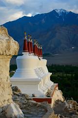 Shey stupas, ladakh (Josh Niederauer) Tags: shey palace ladakh leh india jammu kashmir stupas stupa gompa mountains himalayas himalayan buddhism sunset evening travel religion religious art nikond800 nikkor 70200 28 vrii
