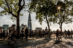 Into the afternoon sun (James Waghorn) Tags: tree sun summer urban sigma1750f28exdcoshsm d7100 river london towerbridge thames city splittone shadows toweroflondon theshard clouds england nikon
