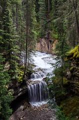 Johnston Creek (TheReilDeal) Tags: banff banffnationalpark johnstoncreek johnstoncanyon