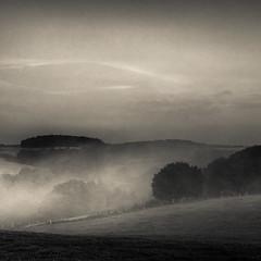 * (sedregh (on/off)) Tags: nebel fog mist eifel landschaft landscape