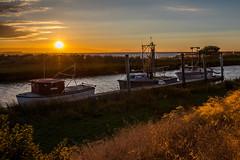 Alviso Docks (Tom Yamamoto) Tags: alviso sanjose california sunset boats docks slough landscape canon 5d mk iv