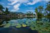 Candi Dasa Lagoon (ben_leash) Tags: candidasa bali indonesia sony a77 lilies lilypad waterlilies ultrawide cloud bluesky palms garden temple