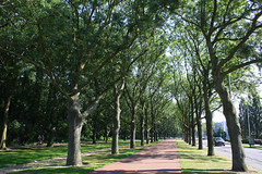 This Wonderful September (onno de wit) Tags: nederland netherlands kralingsebos kralingen kralingseplas