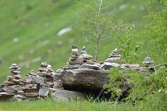 DSC_4534 (d90-fan) Tags: rauris raurisertal natur alpen salzburgerland österreich nationalpark npht hohe tauern wandern krumltal seidlwinkeltal