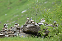 DSC_4534 (d90-fan) Tags: rauris raurisertal natur alpen salzburgerland sterreich nationalpark npht hohe tauern wandern krumltal seidlwinkeltal