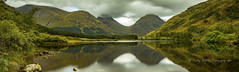 on the road to Loch Etive (pixellesley) Tags: lochetive glencoe scotland panorama lake water reflections mountains woodland meadow lesleygooding summer landscape