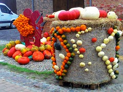2014-10-20 Kremmen 10 (dks-spezial) Tags: scheunenviertel kremmen kurbisfest kurbismarkt