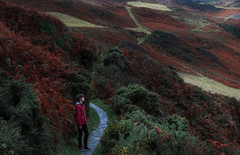 21/365 - Crimson (akoalacoven) Tags: uk travel autumn boy red england orange cliff west colour green yellow dark landscape person foot haze alone britain path south small coastal devon jacket moors