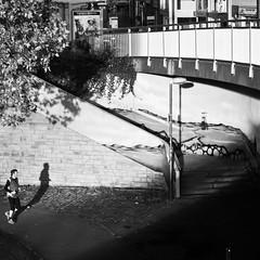 chase your shadow (city/human/life) Tags: autumn light people blackandwhite bw oktober sun sunlight white black tree fall sports river germany deutschland licht essen nikon october laub herbst menschen nrw sw bild runner brcke leafs laterne frderturm bltter schatten ruhr ruhrgebiet rennen baum schwarz jogger chasing haltestelle chl laufen ruhrarea lufer weis nachmittag d90 sonnenlicht sportler schwarzweis b224 2013 ruhrdistrict essenwerden nikond90 gender cityhumanlife