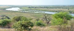 DSC_7762 (stephanelhote) Tags: portraits enfants paysages etosha okavango flore fleuve afrique faune namibie zambie himbas zambèze