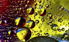 Not Mixing (beverlyks) Tags: abstract macro water oil mixing macromonday macromondaythemeoilandwater