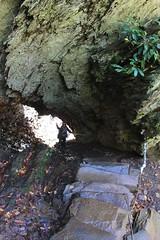 Through the Arch Rock (daveynin) Tags: rock stairs arch nps tennessee tenn trail greatsmokymountains marlena archrock deaftalent deafoutsidetalent deafoutdoortalent