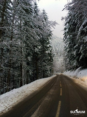 On va au ski! (Summum Graphic) Tags: road travel winter vacation snow france mountains alps forest alpes landscape photography nikon chartreuse route neige paysage fort firs montagnes isre sapins