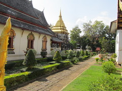 Temple Garden Chiang Mai, Thailand (JP Newell) Tags: asia seasia buddhist religion temples