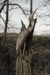 heron carving at fradley pool, staffordshire (downhamdave) Tags: lake tree bird heron pool statue canon eos wooden raw carving junction scuplture acr ornate waterfowl staffordshire detailed lichfield staffs fradley 60d elements13