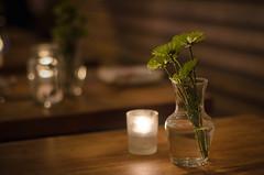 Fake East (vpastro) Tags: flowers newyork flower lowlight candles bokeh manhattan upperwestside afnikkor50mmf14
