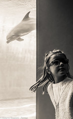 Sliding Doors (ReoBerto) Tags: italy water girl aquarium blu dolphin hideandseek human genova acqua acquario delfino parting bambina severance nascondino separazione