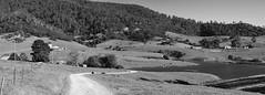Gulaga idyll (OzzRod) Tags: blackandwhite panorama monochrome rural stitch pentax farming bucolic k3 thorium gulaga czjpancolarzebra50mmf18