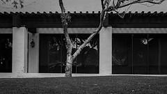 scottsdale 07812 (m.r. nelson) Tags: arizona bw usa southwest monochrome america portraits wildwest urbanlandscape artphotography thewest mrnelson marknelson peopleblackwhite newtopographic markinaz