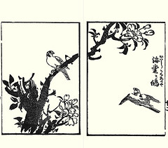 Hall crabapple and unknown bird (Japanese Flower and Bird Art) Tags: flower bird art japan japanese book hall picture woodblock crabapple shibata malus rosaceae nanga halliana readercollection shinbee