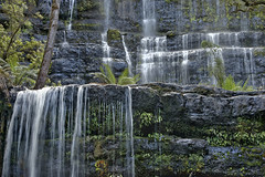 Russell Falls - Mount Field NP (scrumpy 10) Tags: nature water landscape waterfall nikon tasmania scrumpy d800 russellfalls mountfield tasmanien mountfieldnationalpark jacqualine scrumpy10