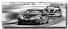 Ginetta Junior Stuart Middleton leads William Tregurtha (jdl1963) Tags: auto sport william racing stuart junior motor motorsport autosport ginetta middleton thruxton 2016 gt5 tregurtha