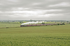 The White Rose on Gamston Bank LNER A3 60103 (FlyingScotsman4472) Tags: white rose flying bank steam a3 nottinghamshire retford scotsman mainline lner 4472 gamston 60103
