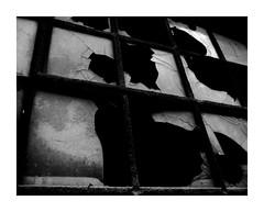Scherben (One-Basic-Of-Art) Tags: 1basicofart canon scherben glck schwarzweis noieretblanc noir blanc blackandwhite rahmen eingerahmt einfarbig grau grauzone oberpfalz