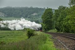 First Appearance (Eddie Hyde) Tags: railway steamtrain flyingscotsman steamlocomotives surreyhills