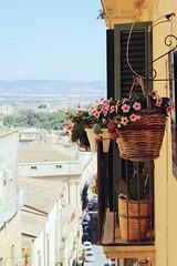 Basket (Shahrazad_84) Tags: flowers italy building window mediterranean basket simplicity romantic sicily caltagirone