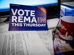 184/366 Remain - 366 Project 2 - 2016 (dorsetpeach) Tags: election 365 vote referendum remain 2016 366 aphotoadayforayear 366project second365project