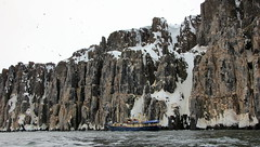 Mountain that is... (carina.ericsson) Tags: mountain snow bird water boat svalbard thickbilledmurre hinlopen spetsbergsgrissla