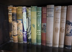 romantic novels (squeezemonkey) Tags: scotland orkney skaillhouse library books bookshelf spines illustration typography novels