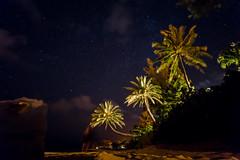 Under The Stars. (PeeterTomson) Tags: ocean camping trees friends sunset summer beach night stars hawaii oahu ghost palm explore enjoy fujifilm 12mm xa1 rokinon