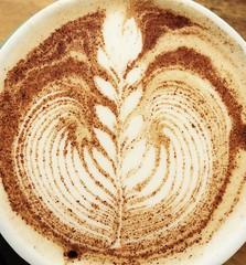 Leafs of Coffee